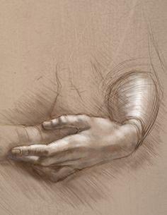 Da Vinci - hand study