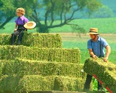 Lancaster PA vacation ideas from Discover Lancaster. Customize a travel itinerary & plan your visit to Lancaster County, PA with our online trip planning tool. Amish Farm, Amish Country, Amish Culture, Amish Community, Lancaster County, Farms Living, Great Life, Summer Breeze, Plan Your Trip