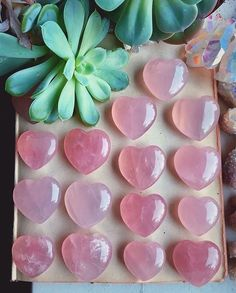 I am devoting this year to loving myself more and these are just the gems to help me do that #gemstones #crystalhealing #love #rosequartz #devotion #gems #crystals #boho #hippie