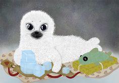 Baby seal illustration
