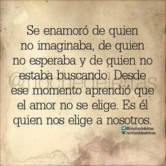 El amor no se elige