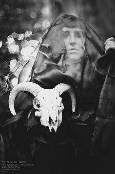 The Skeletal Garden | por lari_venturina