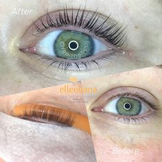e56d0848e77 Last lift and tint by @feeltheheal Keratin Lash Lift, Lash Extensions, Spa  Day