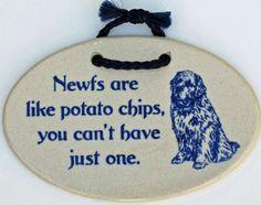 Potato Chips... Plaque