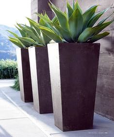 Modern Outdoor Plant Pots Rh Source Books Do Something Singular And Striking Like This In Tall Planters For Front Part Shade Or Patio Full Sun Contemporary Pots For Plants Contemporary Outdoor Plants