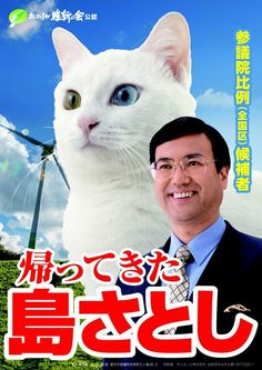We know Japan has a profound admiration of felines. Neko, cat in Japanese, are ubiquitous in the birth country of Hello Kitty and Tama the train station cat who singlehandedly saved a local railway business. It's no surprise that people are drawn to cats that are highly revered in the Japanese cultu...