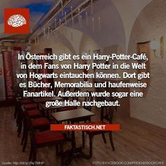 30 facts worth knowing # 2 30 facts worth knowing # 2 The post 30 facts worth knowing # 2 appeared first on Urlaub. Draco Harry Potter, Harry Potter Universal, Harry Potter World, Funny Facts, Weird Facts, Funny Jokes, Travel The World Quotes, I Want To Travel, Traveling By Yourself