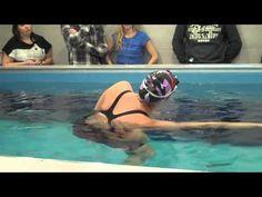 Swimming Tips from Keri-anne Payne and Dan Bullock