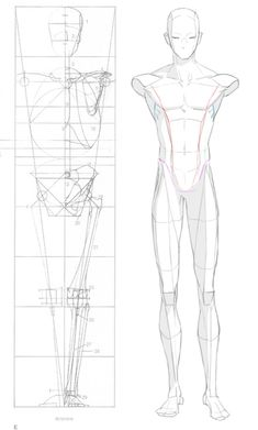 ideas drawing body anatomy pose reference character design for 2019 Body Reference Drawing, Human Figure Drawing, Drawing Reference Poses, Anatomy Reference, Design Reference, Drawing Tips, Character Reference, Male Drawing, Drawing Tutorials