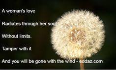 Gone with the wind - eddaz