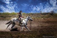"""Destreza gaucha"" de Pablo Pérez Dellepiane - Argentina - Junio/2016 Rio Grande, Horses, Dance, Traditional, Animals, Display Stands, Horse, Antique Photos, Culture"
