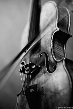 New Music Instruments Photography Orchestra Violin 68 Ideas Sound Of Music, Music Love, Music Is Life, Black White Photos, Black And White Photography, Photo Black, Violin Tumblr, Musica Celestial, Violin Photography