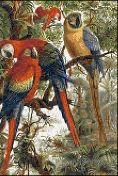 Macaws parrots cross stitch kit or pattern | Yiotas XStitch