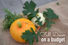 Decorate for fall without spending a fortune