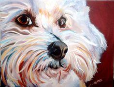 oil pet portrait bichon frise www.zapatastudios.com