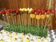 Fruit Forrest:Strawberries,red grapes,green grapes,purple grapes,cantalope & Yellow and White Dipped Strawberries