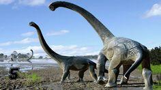 Video di 5 animali estinti che forse sono ancora vivi mammut megaterio plesiosauro mokele-mbembe megalodonte