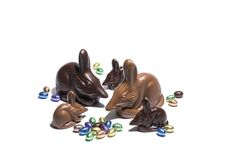 Haigh's Easter Bilbies, Premium milk and dark chocolate.