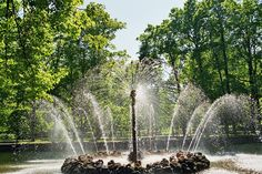 sun fountain of Peterhof, St. Petersburg, Russia - lovely gardens with marvelous fountains - all working only with the gravity of the land's slope