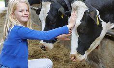 [b]Boerderij[/b] - FarmCamps De Geele Bosch: kids in de stal