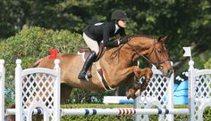 MedalMaclay.com - Equitation Results Archive