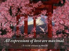 All expressions of love are maximal -ACIM