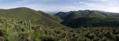 Panorama of the range from Mt Horrocks to a distant Mt Brown