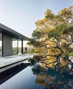 Stunning pool. Mimalist. Reflections.