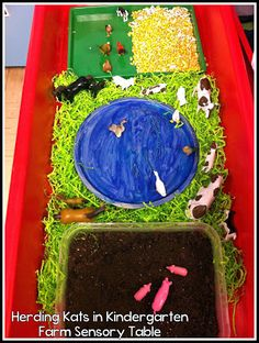 Farm Animal Sensory Table
