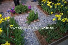 Growing The Home Garden: From the 2013 Nashville Lawn and Garden Show