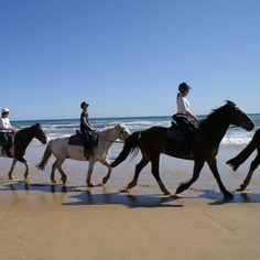Gunnamatta Trail Rides Horse Riding on the Beach Rosebud, Mornington Peninsula VIC | RedBalloon - Jan 2015