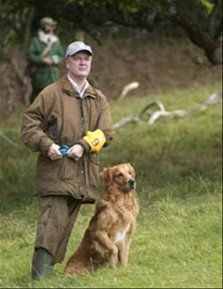 Get your dog trained with our experts - http://www.dog-ramblers.co.uk/  #DogTraining