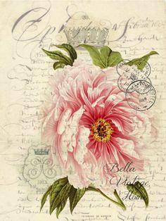 Floral Tea Towel Pink Rose