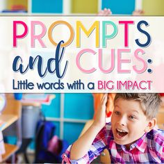 Prompts and Cues: Li