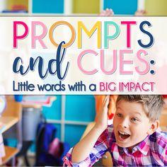 Prompts and Cues: Li
