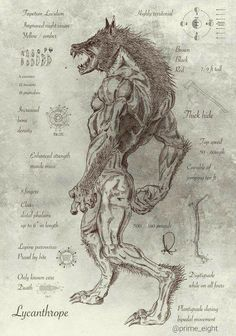 lobisnova - Pesquisa Google Mythological Creatures, Fantasy Creatures, Mythical Creatures, Fantasy Star, Werewolf Art, Savage Worlds, Pathfinder Rpg, Call Of Cthulhu, World Of Darkness