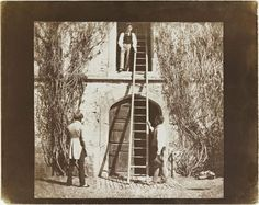 William Henry Fox Talbot. The Ladder, 1844-46. Salt print from a calotype negative. Plate XIV from the Pencil of Nature, the first book to be illustrated with photographs