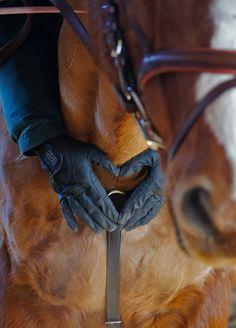 Horse and rider bond. <3