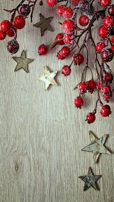 Christmas  .  Holly and  Stars .  Wallpaper