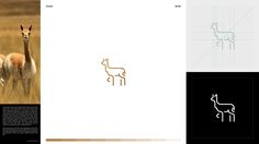 30 days with ANIMALS on Behance