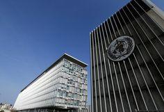 WHO seeks new leader to rebuild damaged reputation | Reuters