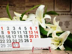 Αλήθεια! Η μέρα του μήνα που γεννήθηκες λέει πολλά για σένα! Letter Board, Lettering, Drawing Letters, Letters, Character, Texting, Calligraphy