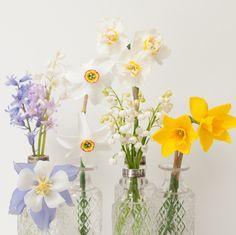 spring flowers  #spring #springflowers