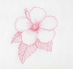 Cómo dibujar flores hawaianas   eHow en Español