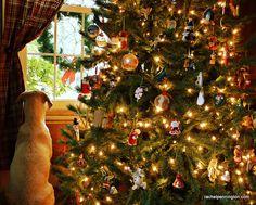 Waiting On Santa.