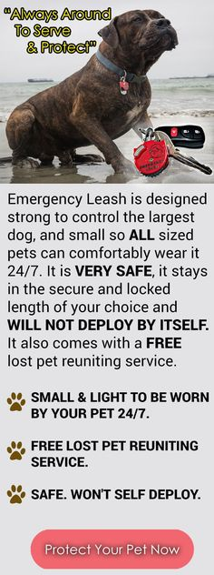 Emergency Leash is a spare leash that is always on your pet's collar. It includes a FREE pet profile lost and found service and shelter alerts.