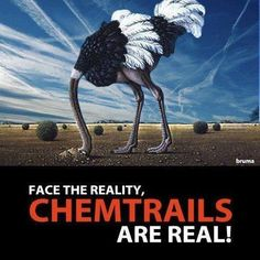 ❥ Chemtrails~ They're REAL.....Global awareness chemtrails / geoengineering on Jan. 25 2014.  For more info go to geoengineering watch org.