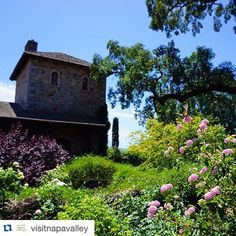 #Repost @visitnapavalley with @repostapp.  Perfect #Summer day at @vsattui! Wine flowers butterflies and all! #VisitNapaValley by rentsfn0w