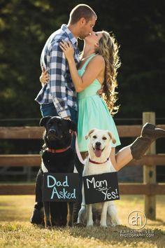 Engagement announcements photo 65