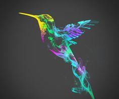 Birds always lovely